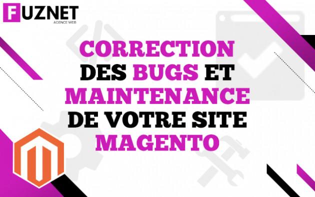 corriger un bug / faire la maintenance de votre site Magento