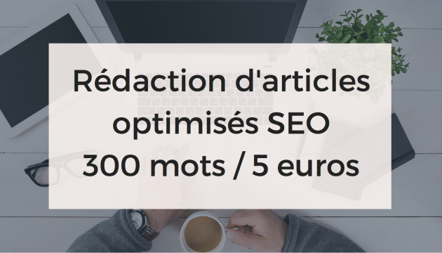 rédiger un article de 300 mots optimisé pour le SEO