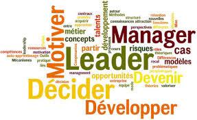 donner des conseils en management stratégique ou opérationnel