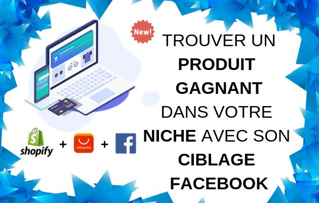 trouver un produit gagnant vérifié dans votre niche avec son ciblage sur Facebook