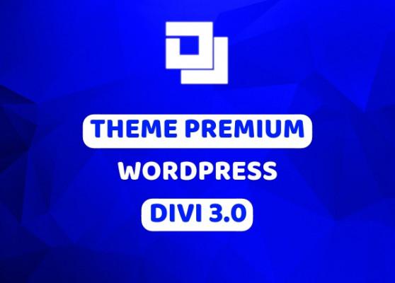 vous fournir le thème premium Divi pour WordPress