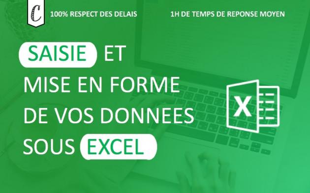 saisir vos données Excel (300 données)