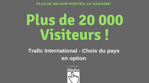 vous envoyer du trafic plus de 20 000 visiteurs internationaux sur votre site