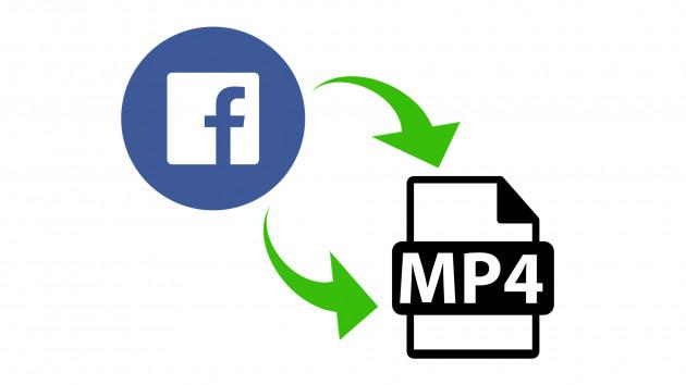 convertir une vidéo de Facebook en fichier vidéo (.avi .mp4 ...)