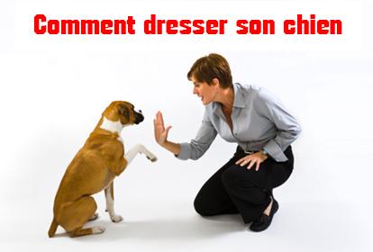 apprendre a dresser son chien