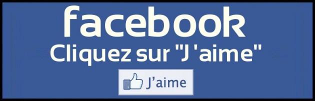 vous donner 1000 j'aime pour votre photo ou statut de votre page Facebook