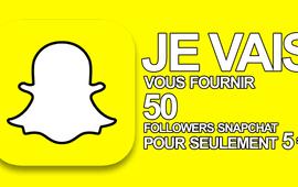 vous fournir 100 followers snapchat