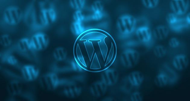 vous donner des conseils pour optimiser votre site WordPress