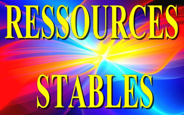 calculer votre Ratio de Ressources Stables