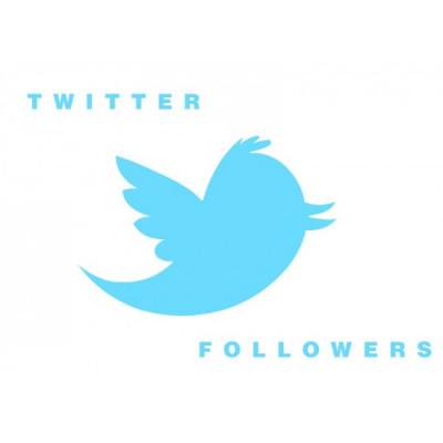 vous offrir 100 abonnés sur votre compte Twitter