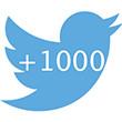 vous offrir 1000 followers twitter