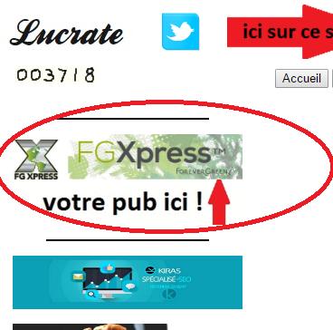 vous installer votre logo publicitaire sur le site Lucrate pendant 1 mois