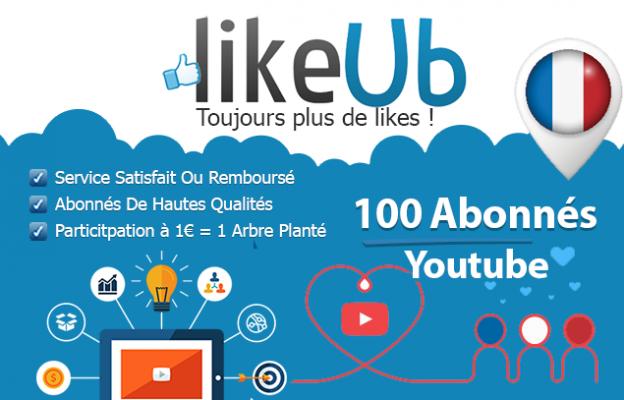 vous fournir 100 abonnés Youtube