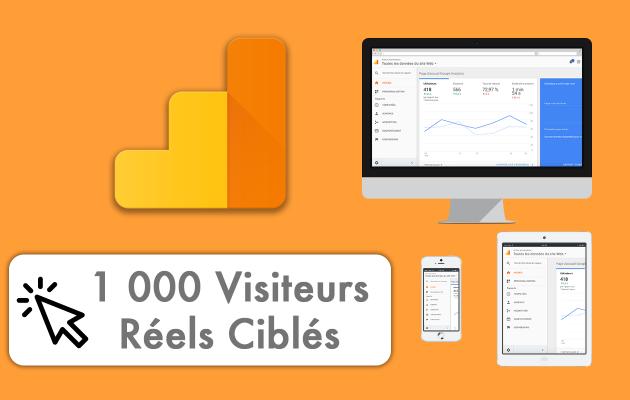 vous fournir 1 000 Visiteurs Réels et Ciblés pour votre site web