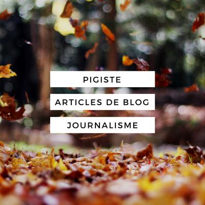 écrire pour vous un article de Blog/Presse de 500 mots ou plus