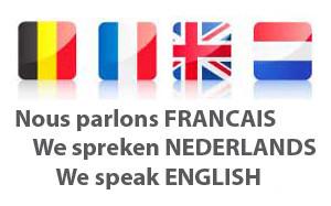 traduire en anglais ou néerlandais et vice versa