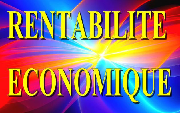 calculer votre taux de Rentabilité Économique ( Comptable et Réelle )