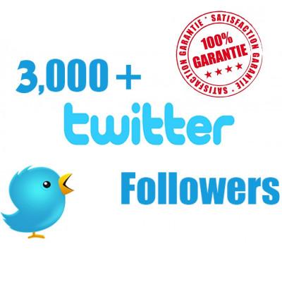 vous ajouter 1000 followers sur votre compte Twitter