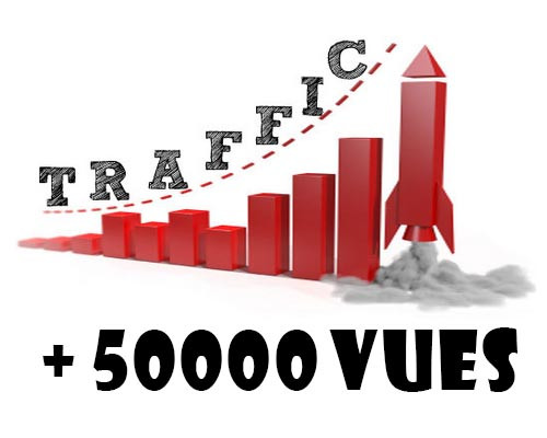 envoyer 50 000 visites sur votre site
