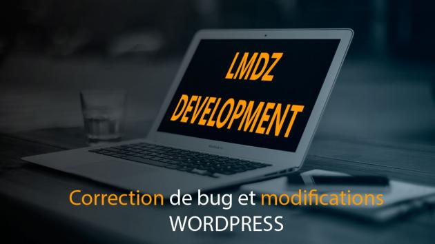 faire une modification ou corriger un bug sur votre site Wordpress