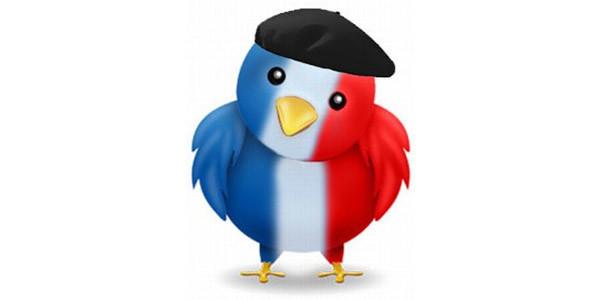 vous fournir 25 followers Twitter FRANCAIS