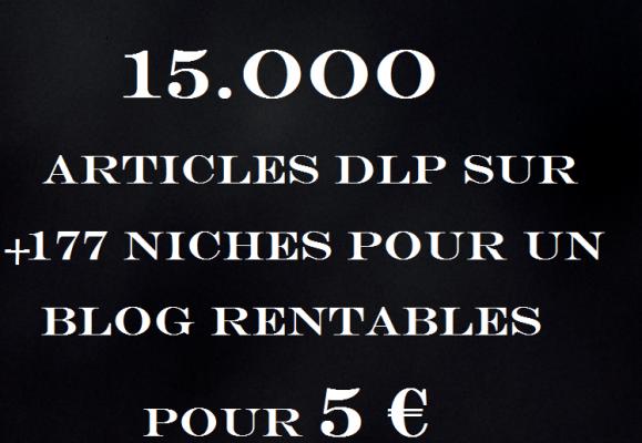 vous fournir 15.OOO Articles sur + 177 Niches pour un Blog Rentables