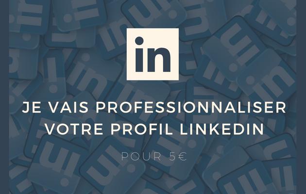 professionnaliser tout votre profil LinkedIn