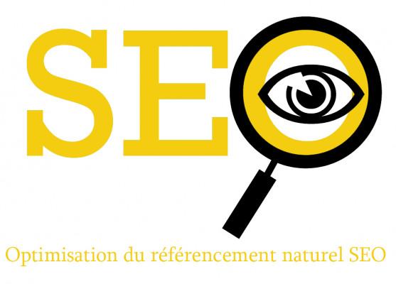 auditer le référencement naturel SEO de votre site, et vous faire une formation SEO