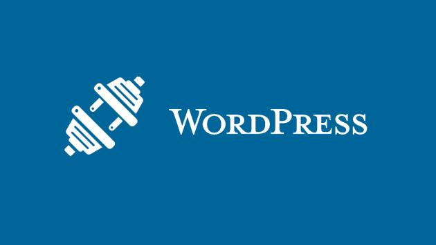 je vais fixer un bug dans votre site web wordpress pour 5