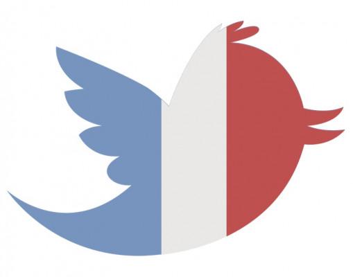 vous envoyé 60 vrais followers Français sur votre compte Twitter