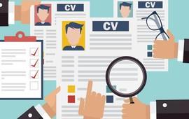 créer un CV original totalement personnalisable
