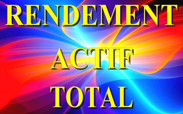 calculer votre Taux de Rendement Actif Total  Comptable et Economique