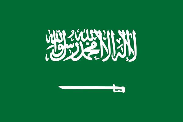 vous fournir 5 000 emails d'entrepises arabie saoudite