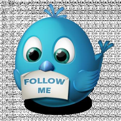 ajouter 4000 followers sur votre compte Twitter