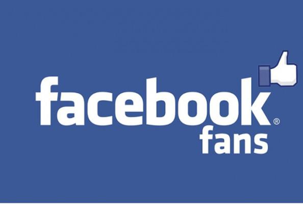 vous fournir 1.000 fans à votre page Facebook