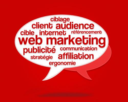 vous donner mon conseil avisé sur votre site web