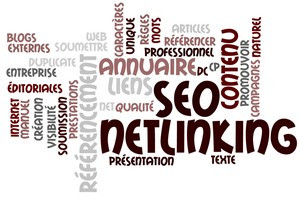 effectuer le NETLINKING de votre site web