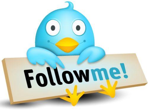 vous ajouter 3.000 followers à votre Twitter