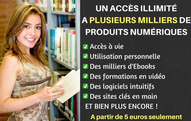 vous fournir pas moins de 800 ebooks, dont la moitié en français