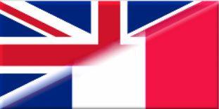 résumer un article scientifique en anglais vers le français