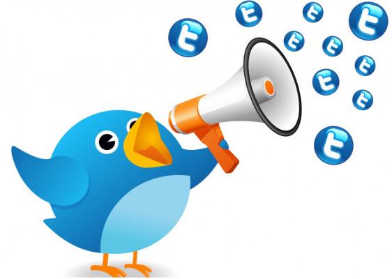 fournir 100 retweets twitter Francais
