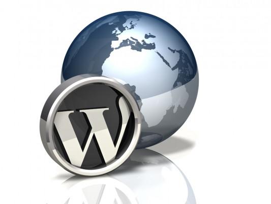 installer un thème wordpress et mis en place comme démo en 5 heures