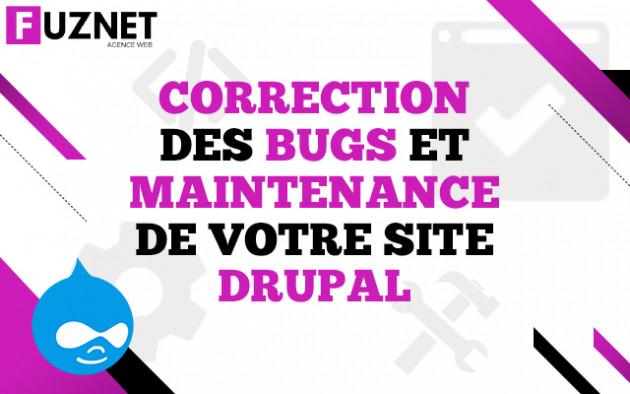 corriger un bug / faire la maintenance de votre site Drupal