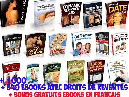 vous livrer + de 1100 ebooks (anglais) +  droits de reventes +  ebooks en FRANÇAIS