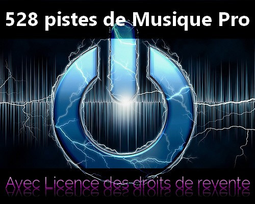 vous fournir 528 pistes de musique professionnelle + droits de revente