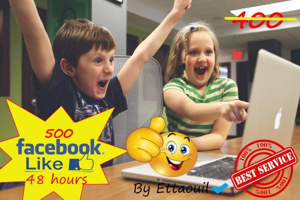 vous fournir 500 likes sur votre page facebook