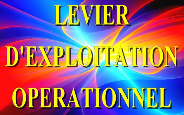 calculer votre Levier d'Exploitation Operationnel ( LEO )