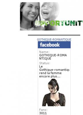 vous installer un badge de page  Facebook sur le site Lucrate pendant 1 mois