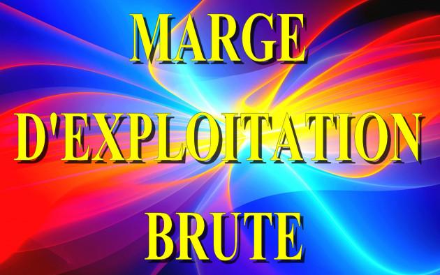 calculer votre taux de Marge d'Exploitation Brute  Comptable et Economique