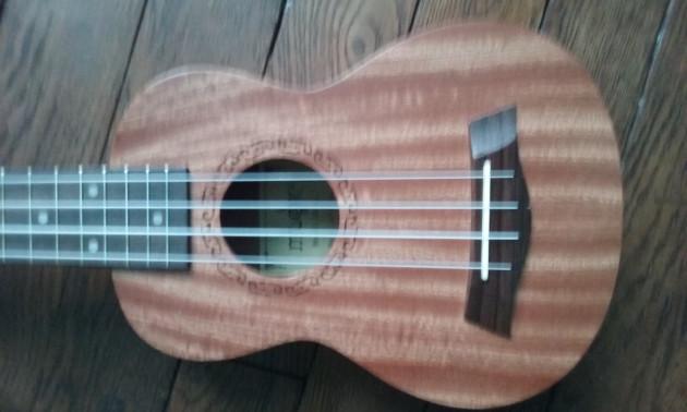 vous trouver un bon ukulele correspondant à votre demande